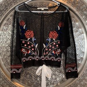 Hippie Laundry Sheer Embroidered Blouse S
